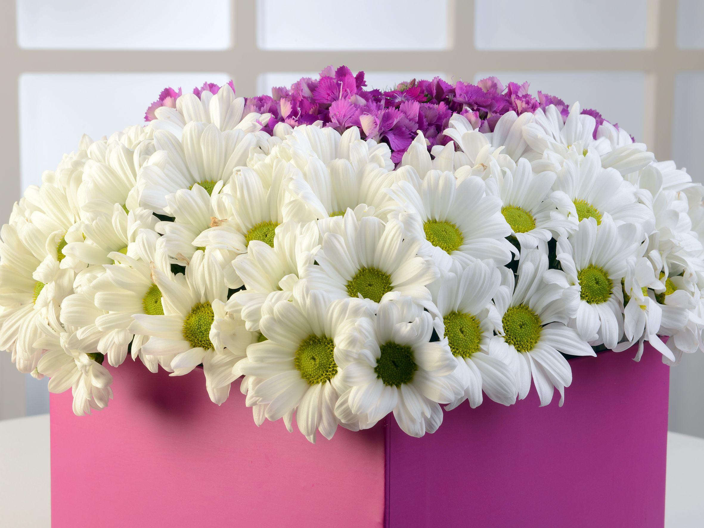 Pembe Kare Kutuda Beyaz Biçmeler Kutuda Çiçek çiçek gönder