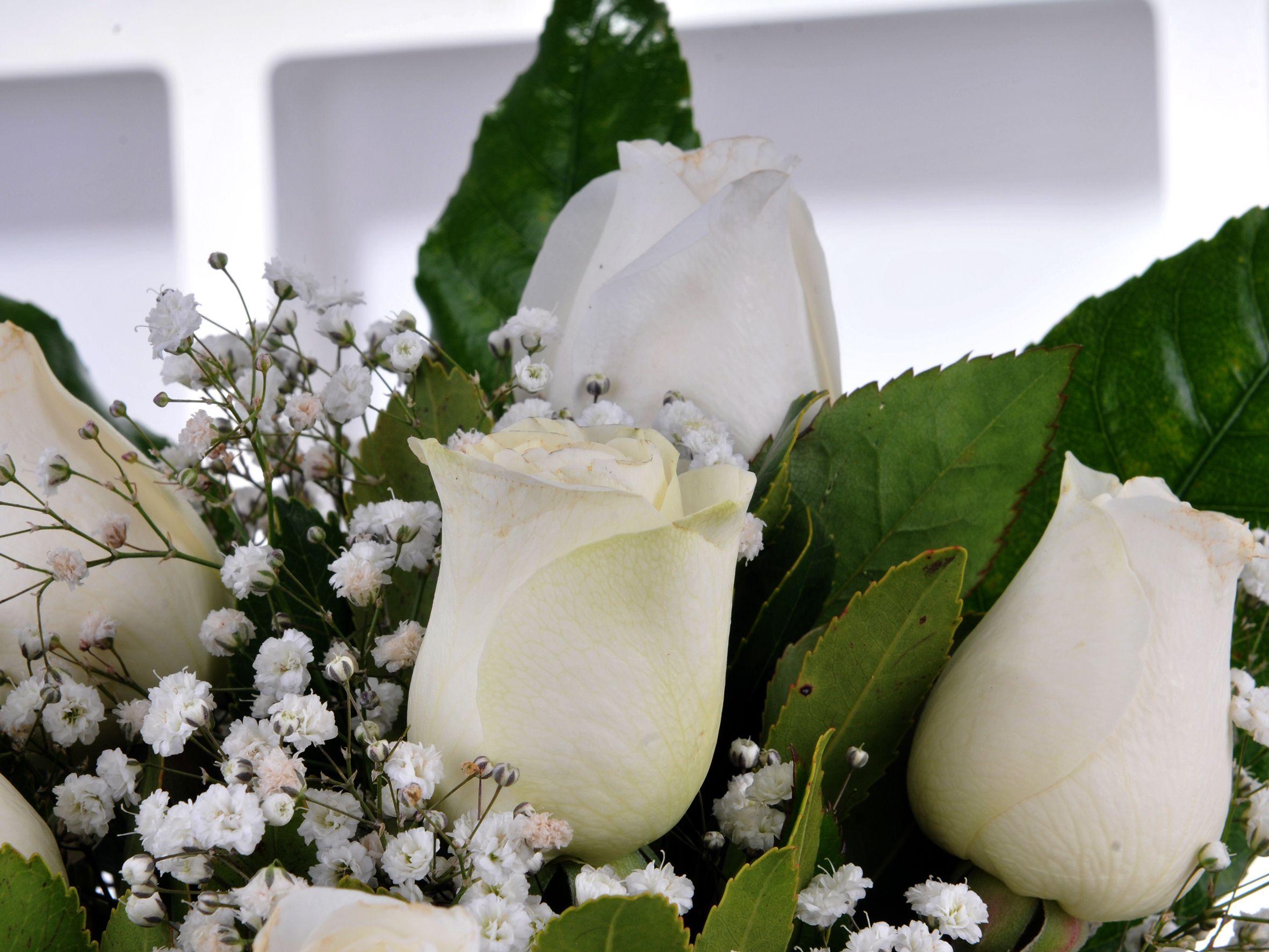 Sade ve Zarif 7 Beyaz Gül Arajmanı Aranjmanlar çiçek gönder