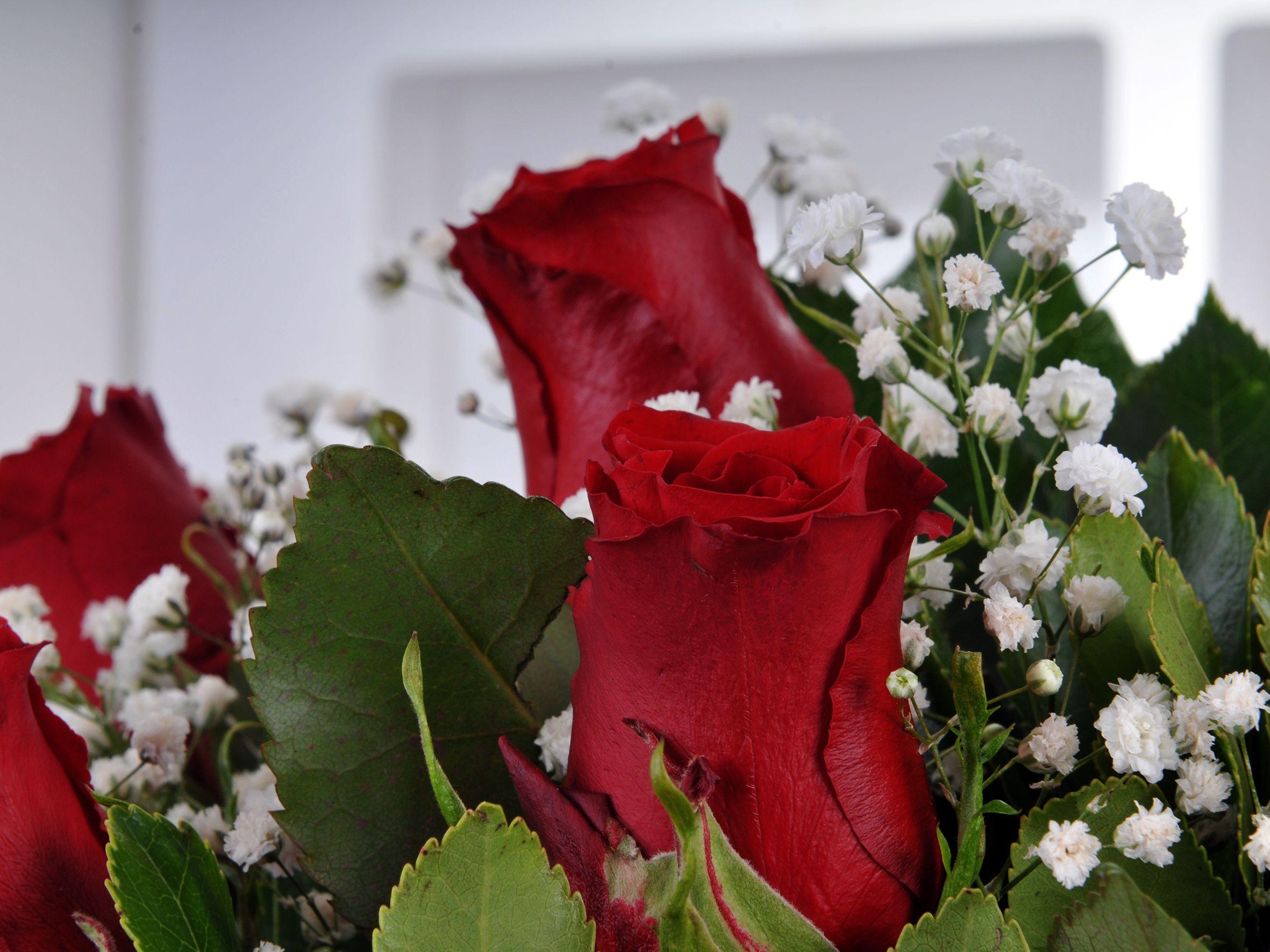 Vazoda 7 Kırmızı Gül  Aranjmanlar çiçek gönder