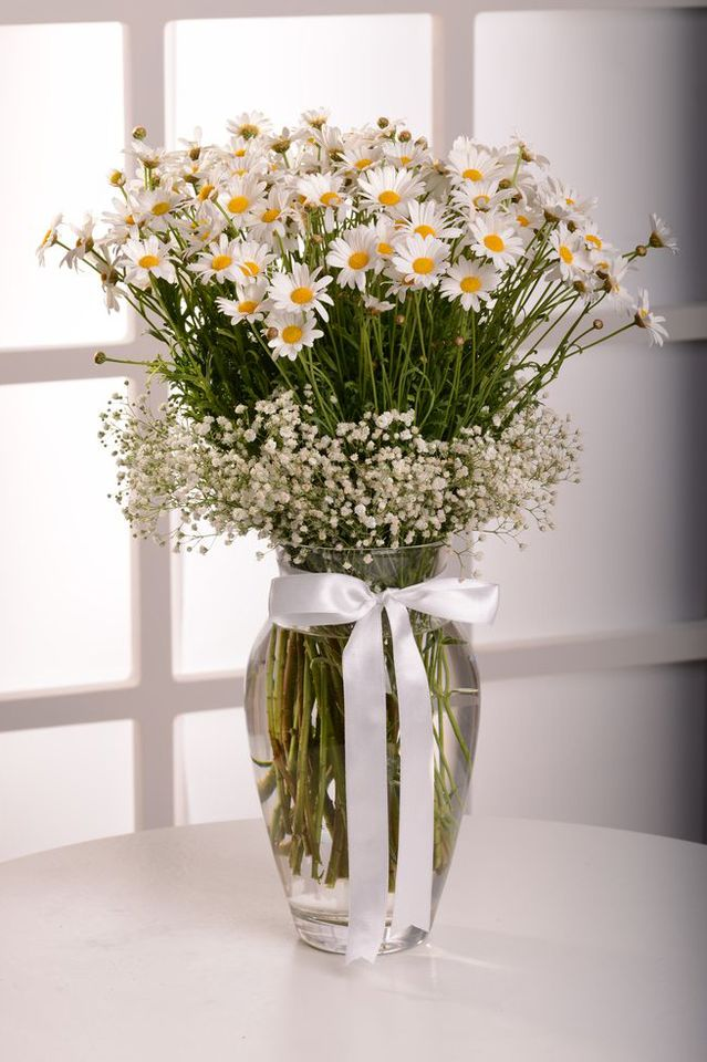 Papatyaların Dansı  çiçek gönder
