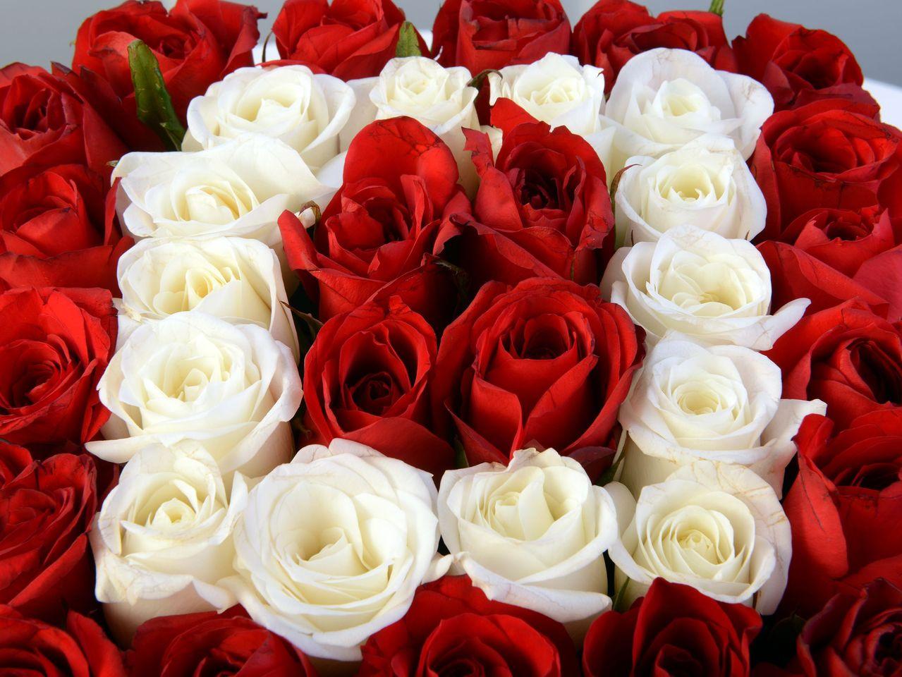 Sevgi Köşesi Kutuda Çiçek çiçek gönder