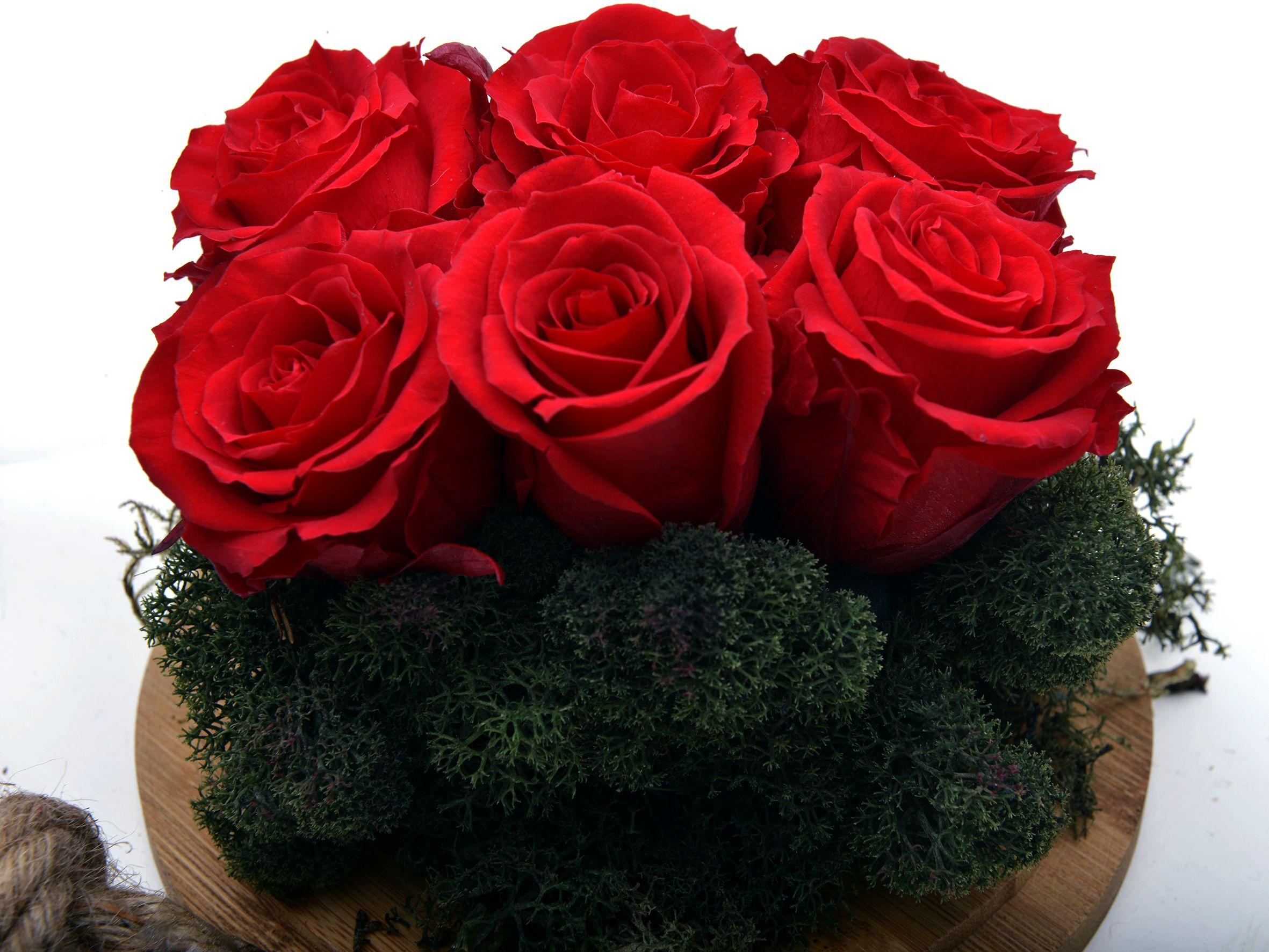 Solmayan Kırmızı  Güller Solmayan Güller  çiçek gönder