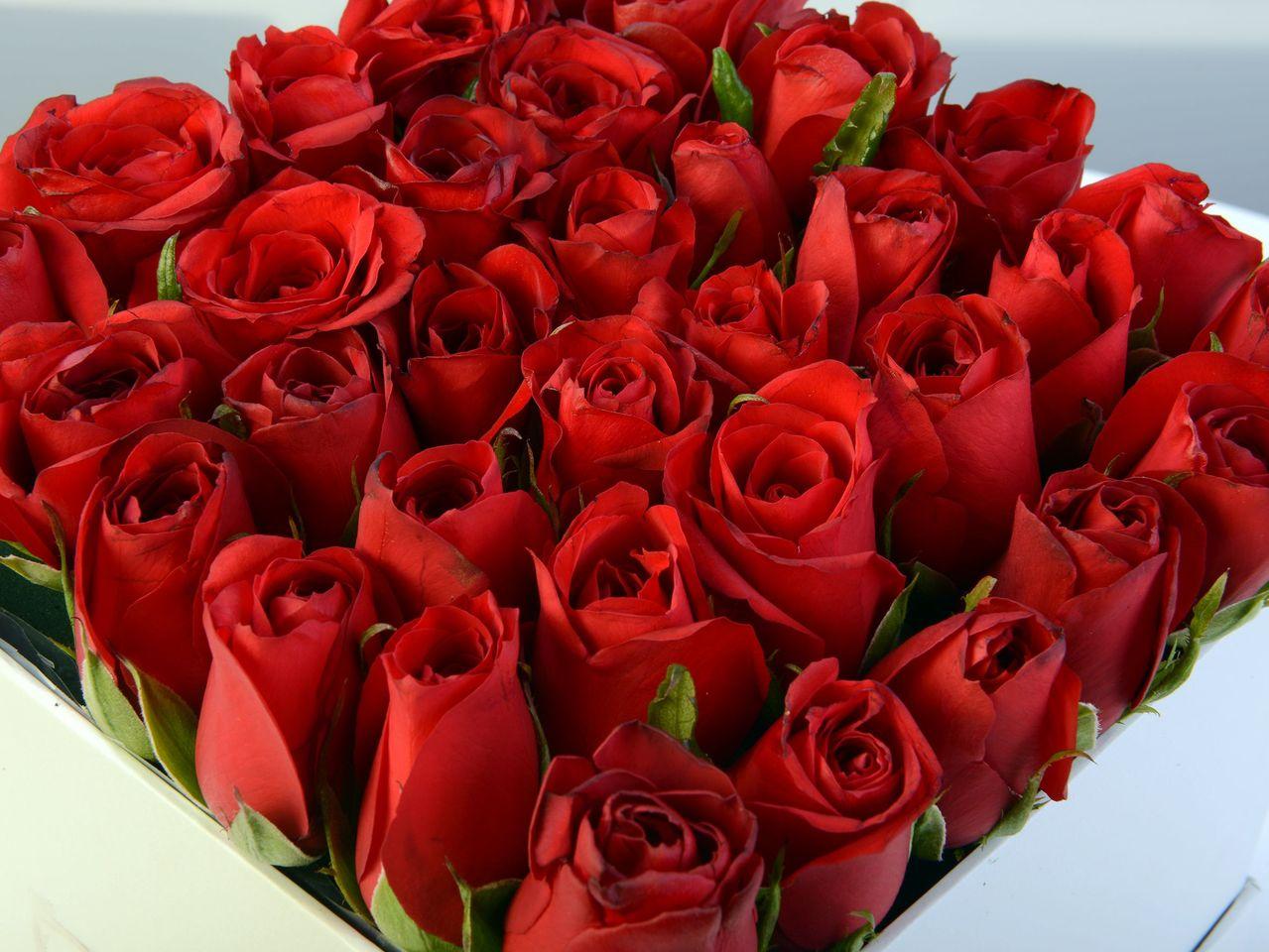 Sevda Şarkısı Kırmızı Güller Kutuda Aranjmanlar çiçek gönder