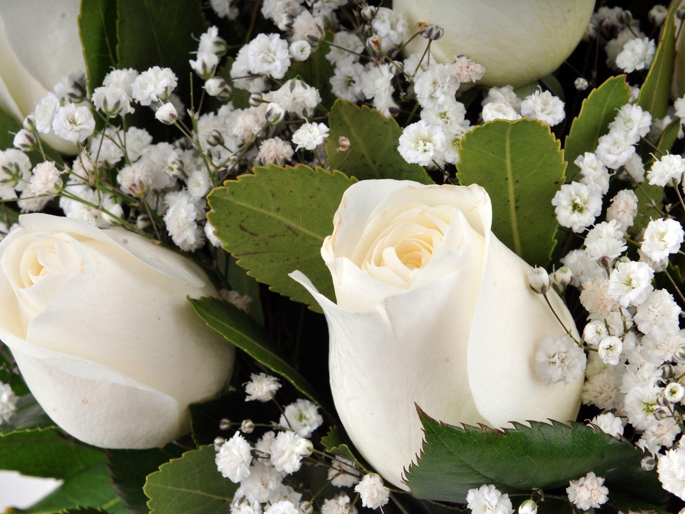 Vazoda 9 Beyaz Gül Çiçek Arajmanı.. Aranjmanlar çiçek gönder
