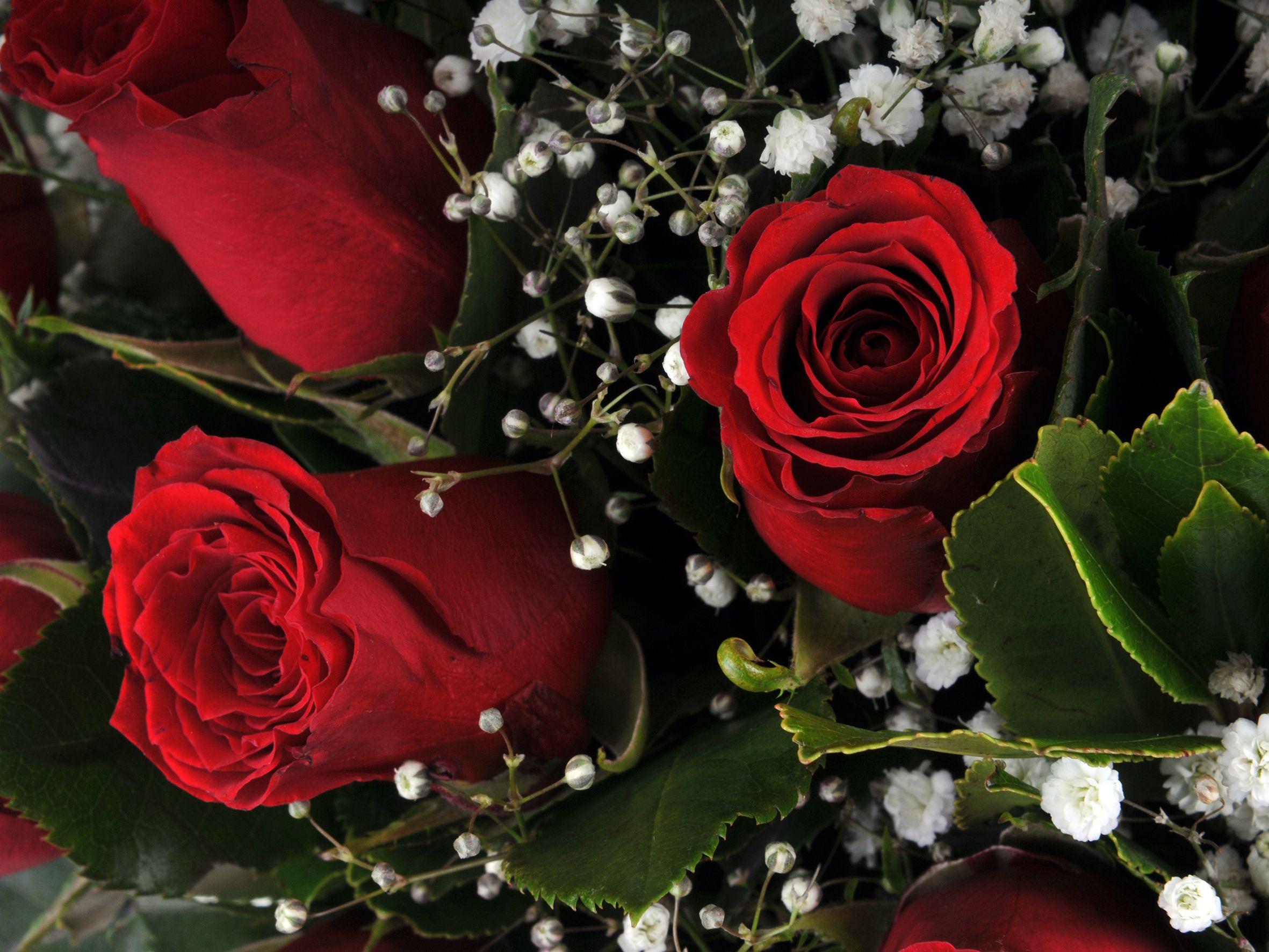 Vazoda 19 Kırmızı Gül.. Aranjmanlar çiçek gönder