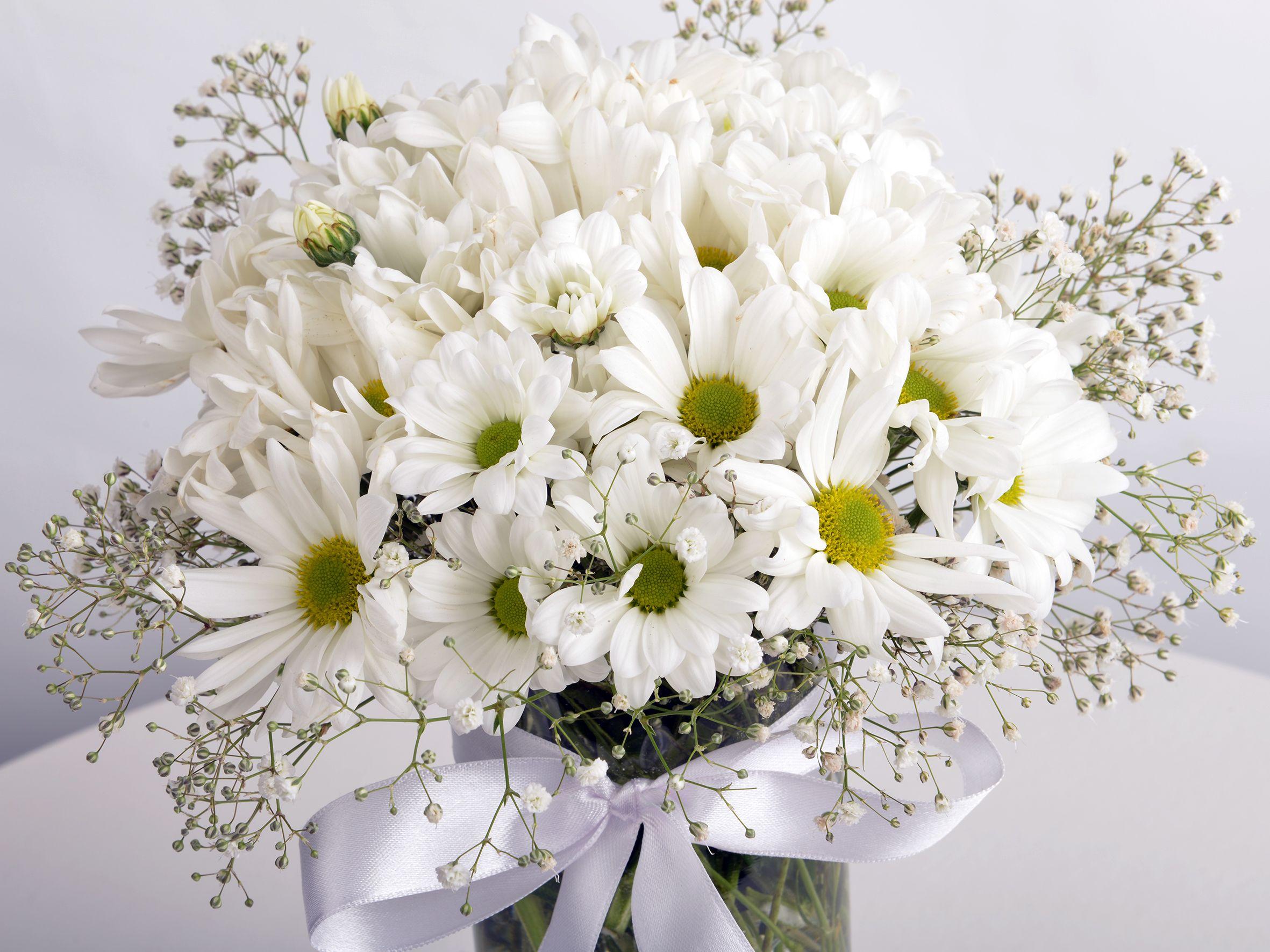 Papatya Küresi Aranjmanlar çiçek gönder