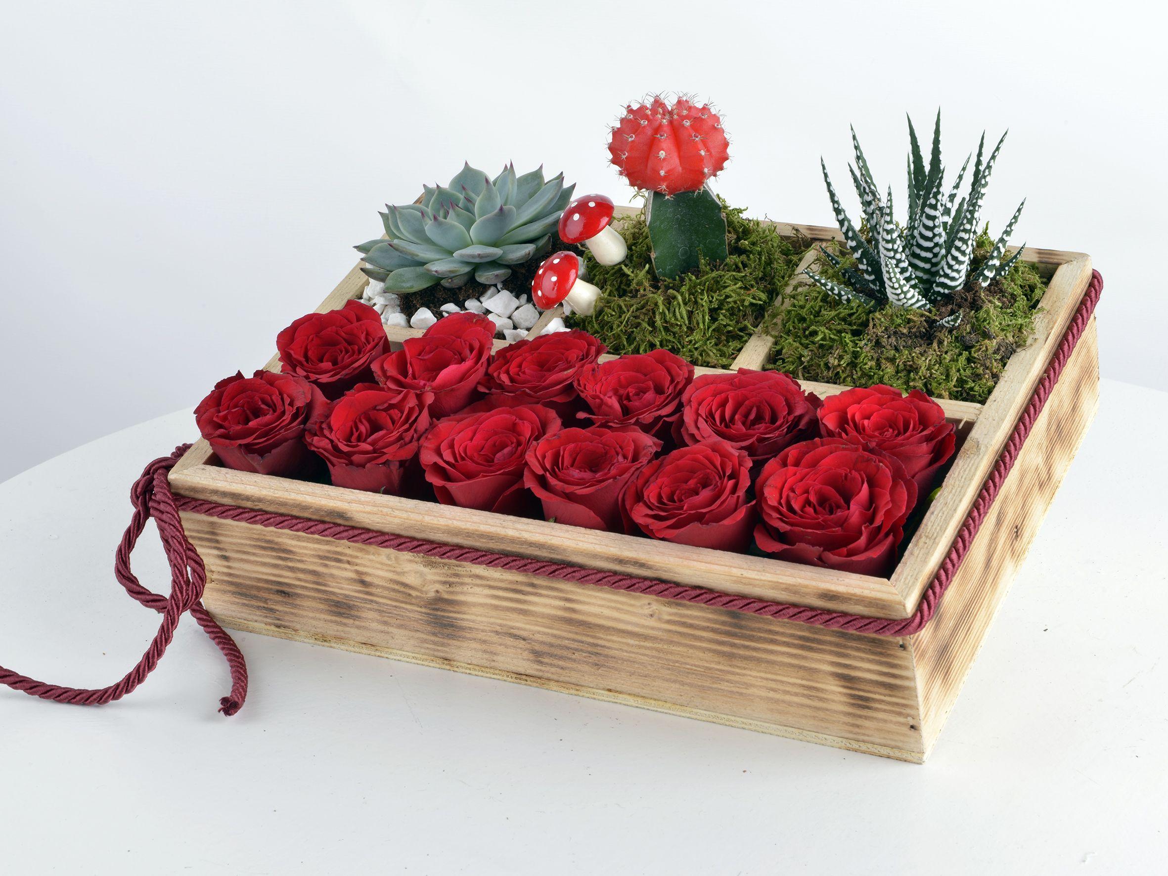 Teraryum ve Kırmızı Güller Terarium çiçek gönder