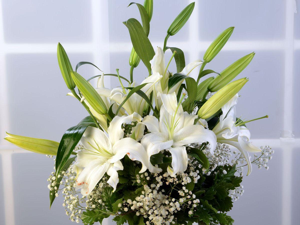 Cam Vazoda Lilyum Aranjmanı Aranjmanlar çiçek gönder
