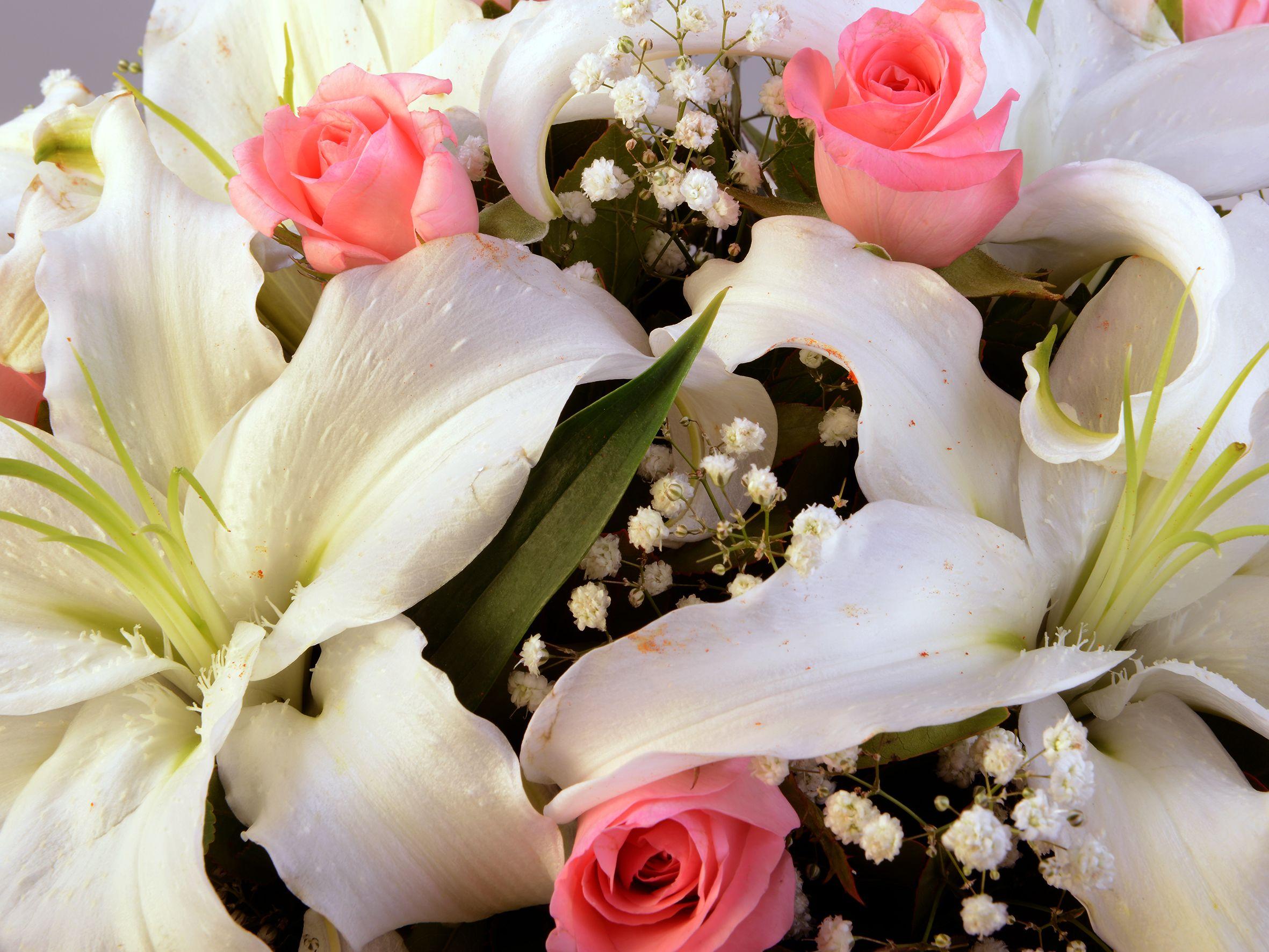 Kare Kutuda Lilyum ve Güller. Aranjmanlar çiçek gönder