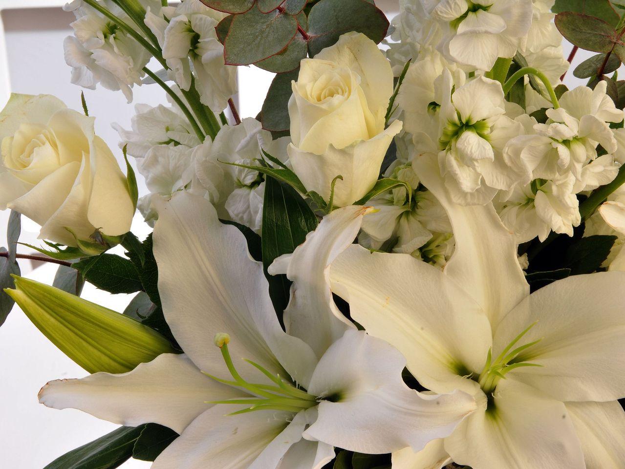 Şebboy Kokusu Kutuda Çiçek çiçek gönder