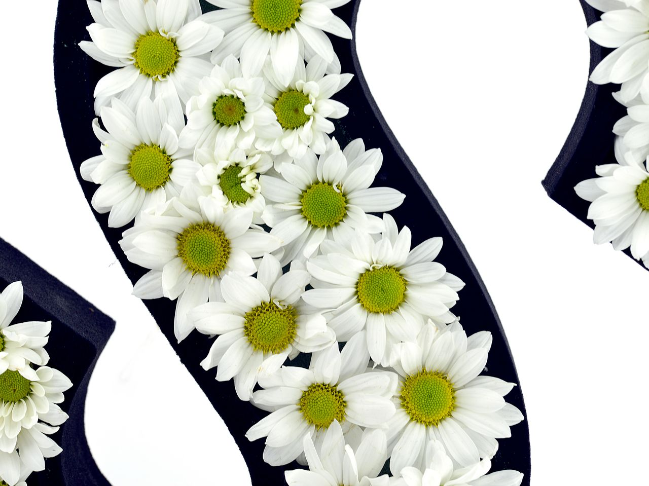 Kişiye Özel İstediğiniz Papatyalardan Baş Harf Harfli Çiçek çiçek gönder