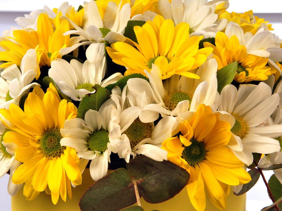 Sarı Silindir Kutuda Renkli Biçmeler  Kutuda Çiçek çiçek gönder