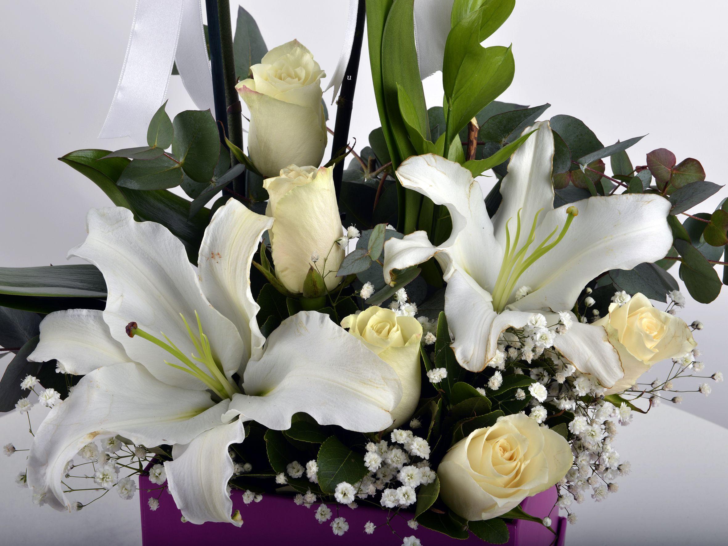 Hediye Kutusunda Çift Dallı Beyaz orkide.... Orkideler çiçek gönder