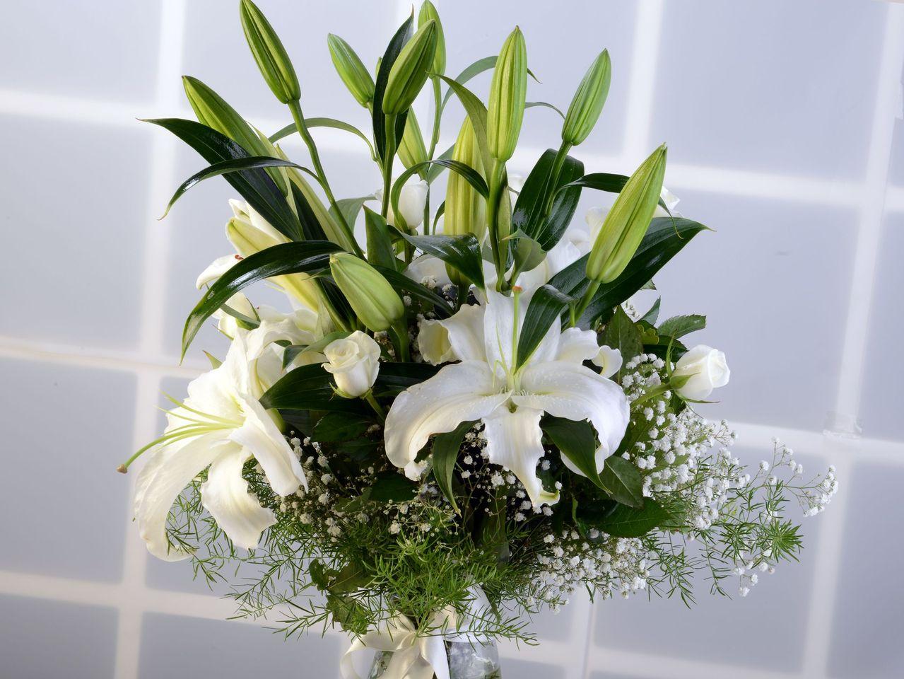 Beyaz Hisler Aranjmanlar çiçek gönder