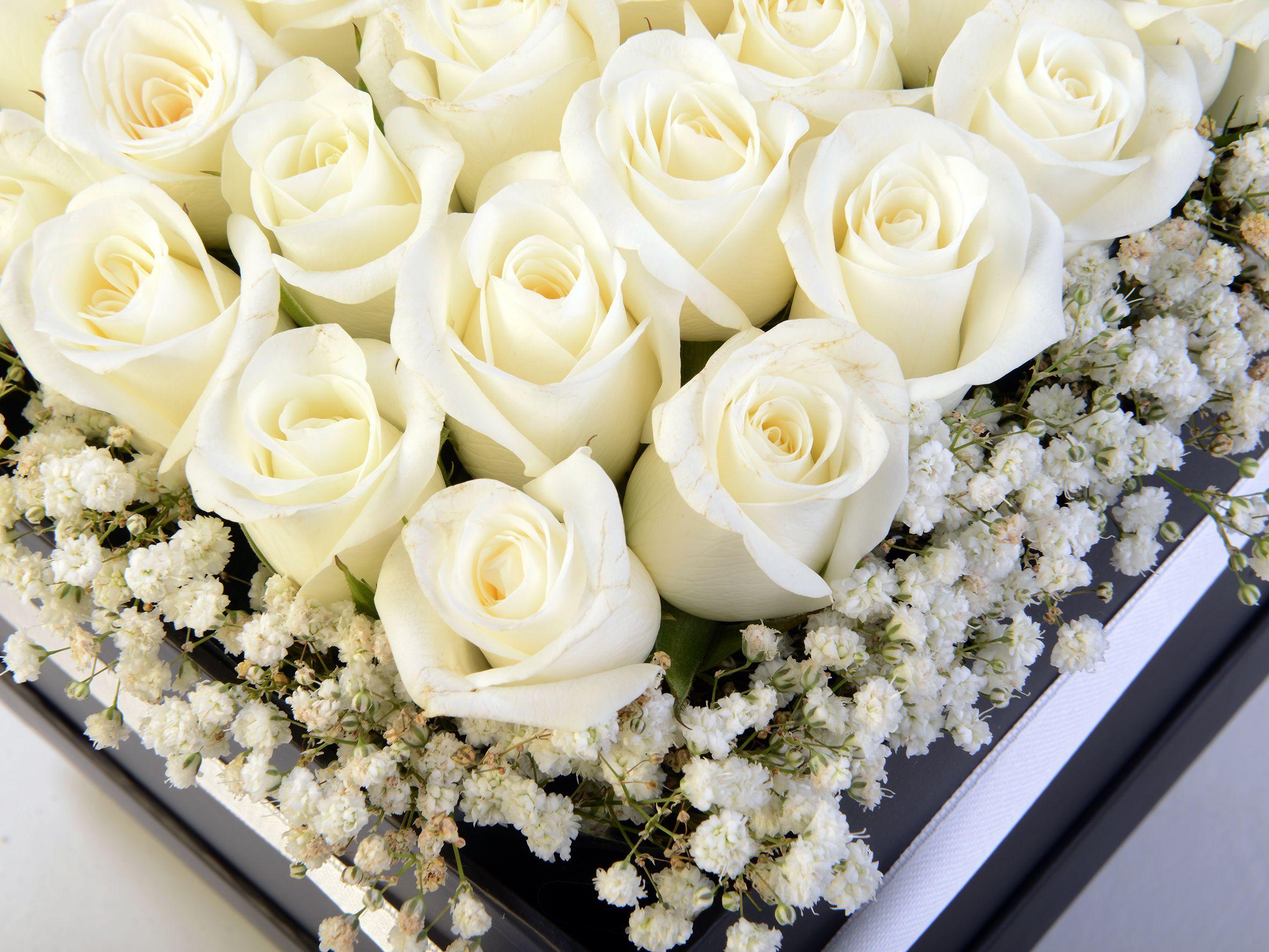 Siyah Kare Kutuda Beyaz Gül Aranjmanı. Kutuda Çiçek çiçek gönder