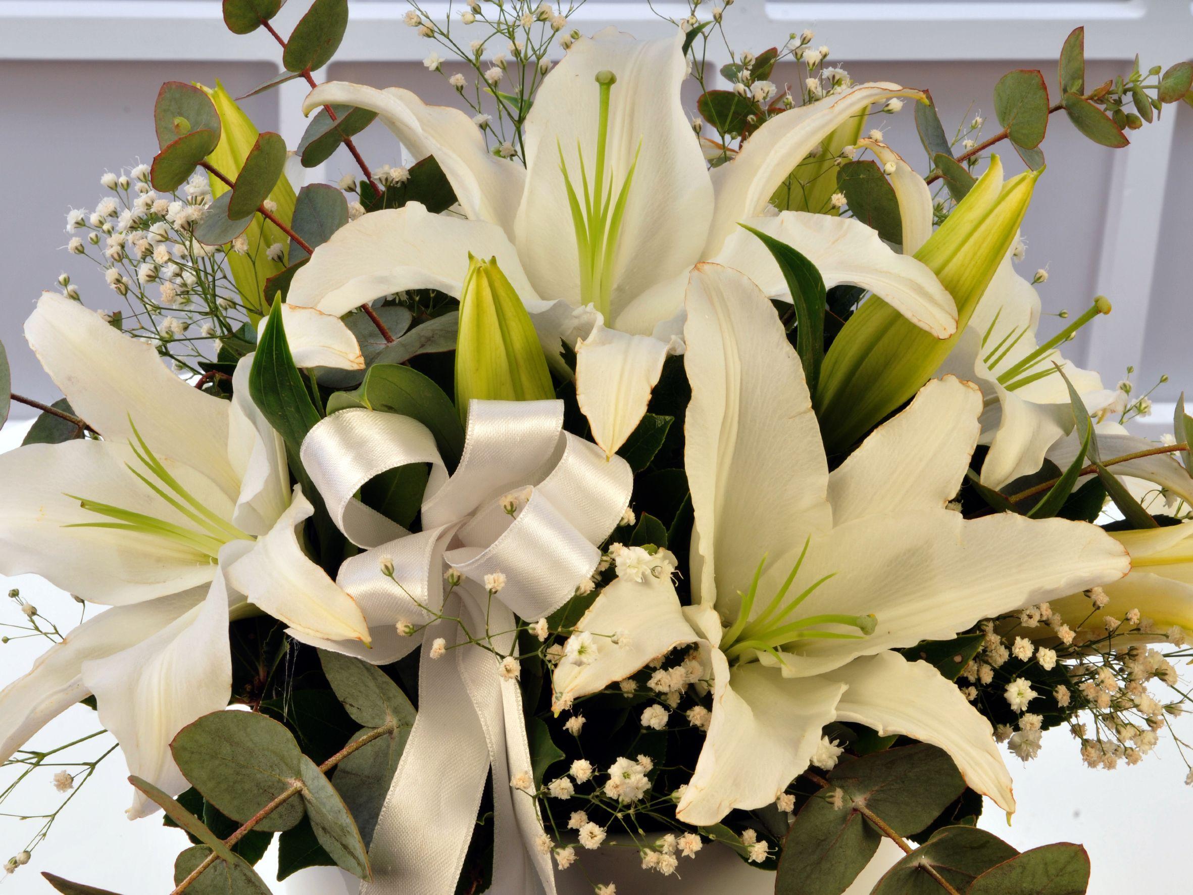 Beyaz Esinti.. Aranjmanlar çiçek gönder