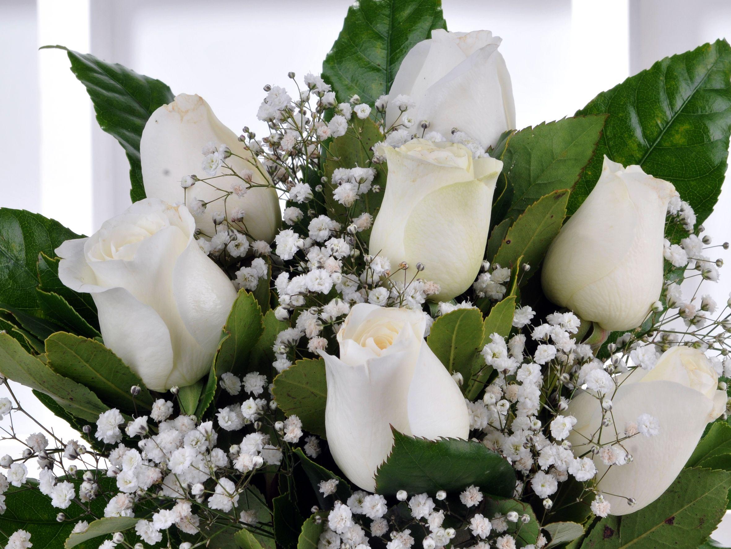 Vazoda 7 Beyaz Gül Arajmanı.. Aranjmanlar çiçek gönder