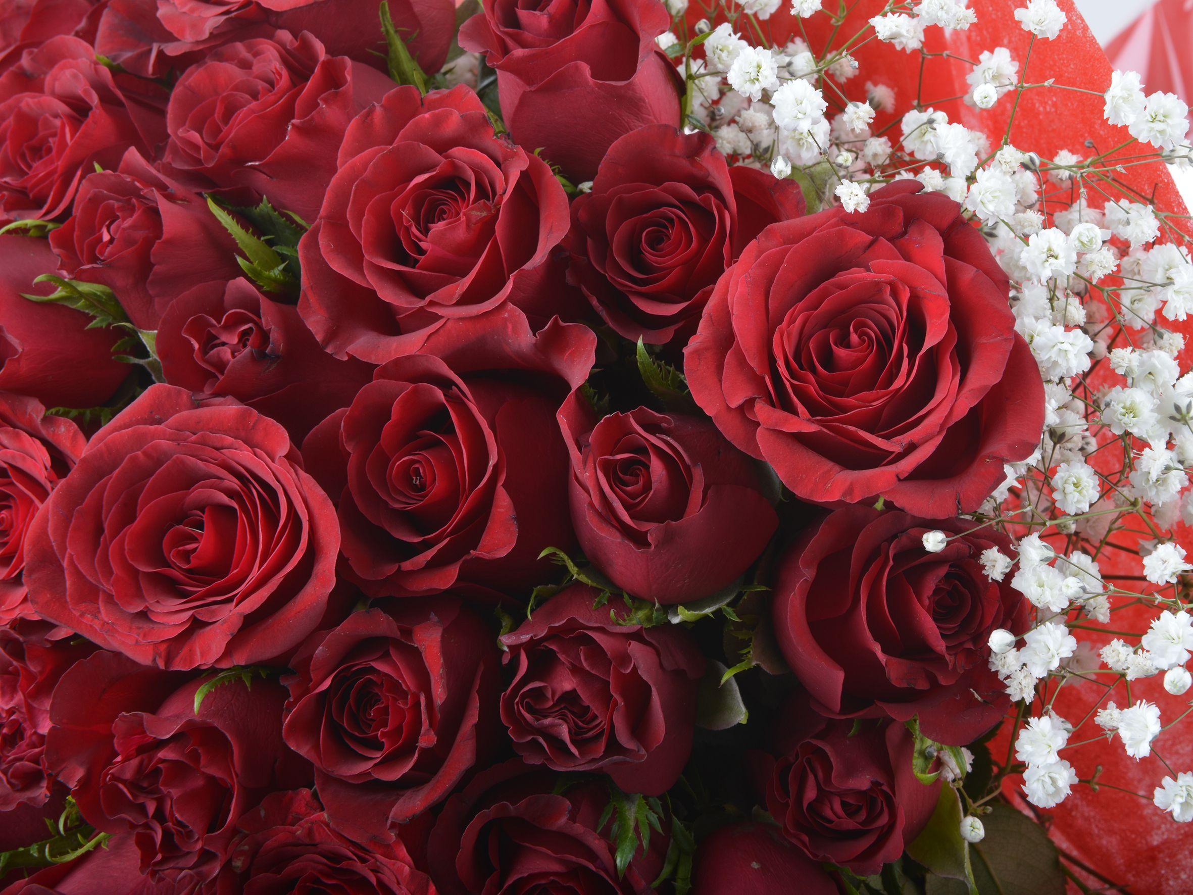 Aşkta Sıcak Bir Esinti 101Adet  Kırmızı Gül Buketi. Buketler çiçek gönder