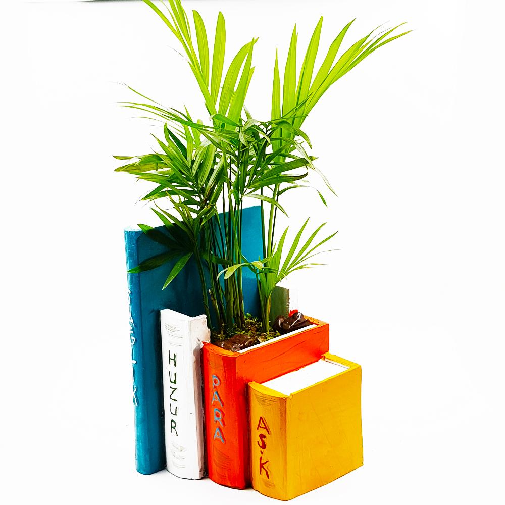 Kitap Saksı Chamadore Terarium çiçek gönder