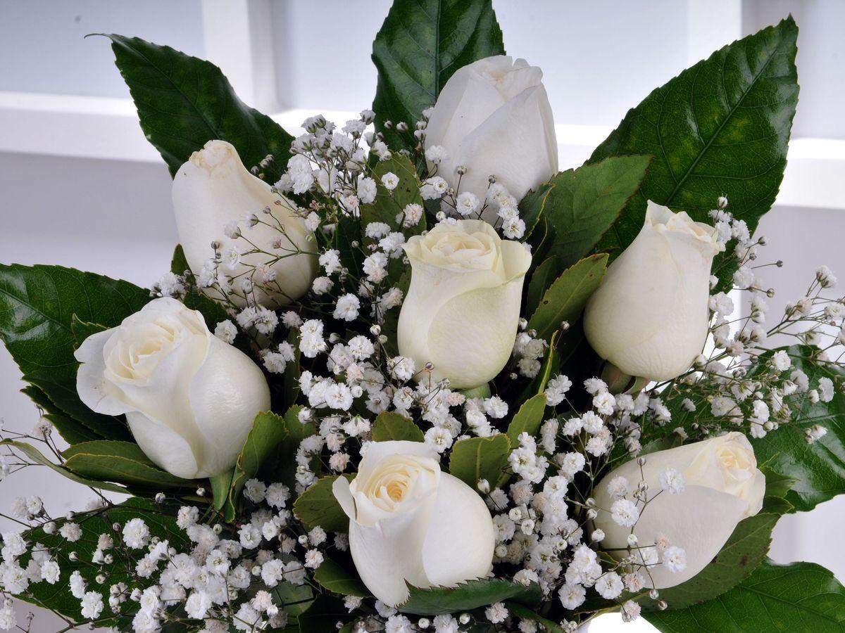 Vazoda 7 Beyaz Gül Arajmanı. Aranjmanlar çiçek gönder