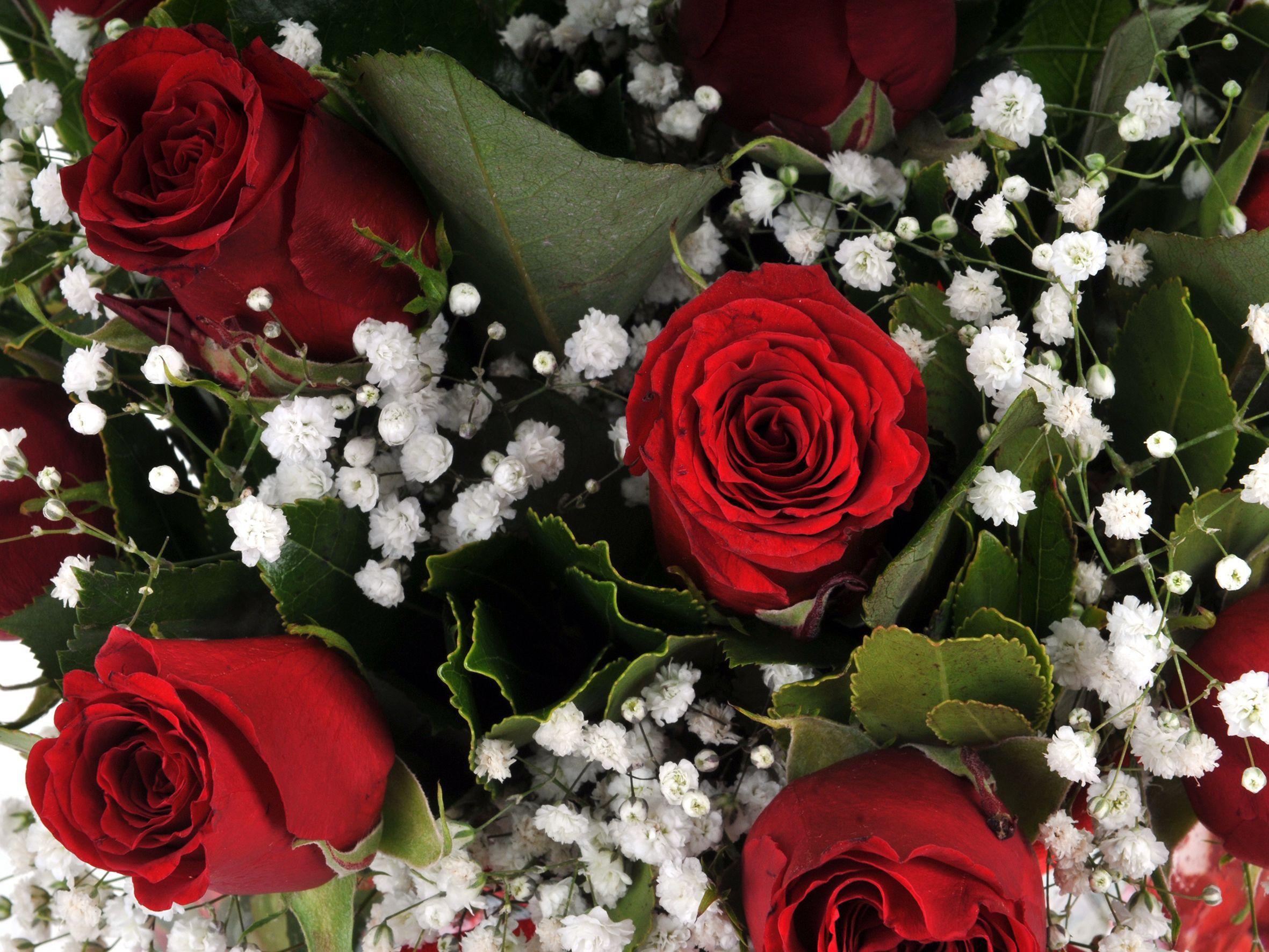 Fanus Vazoda 11 Kırmızı Gül.. Aranjmanlar çiçek gönder