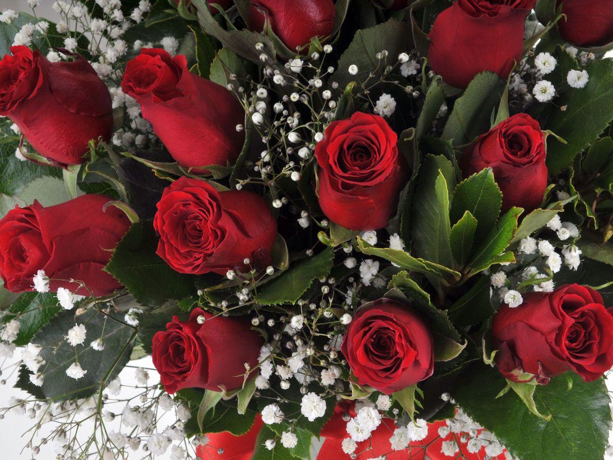 Kızıl Melodi 15 Kırmızı Gül Çiçek Arajmanı Aranjmanlar çiçek gönder