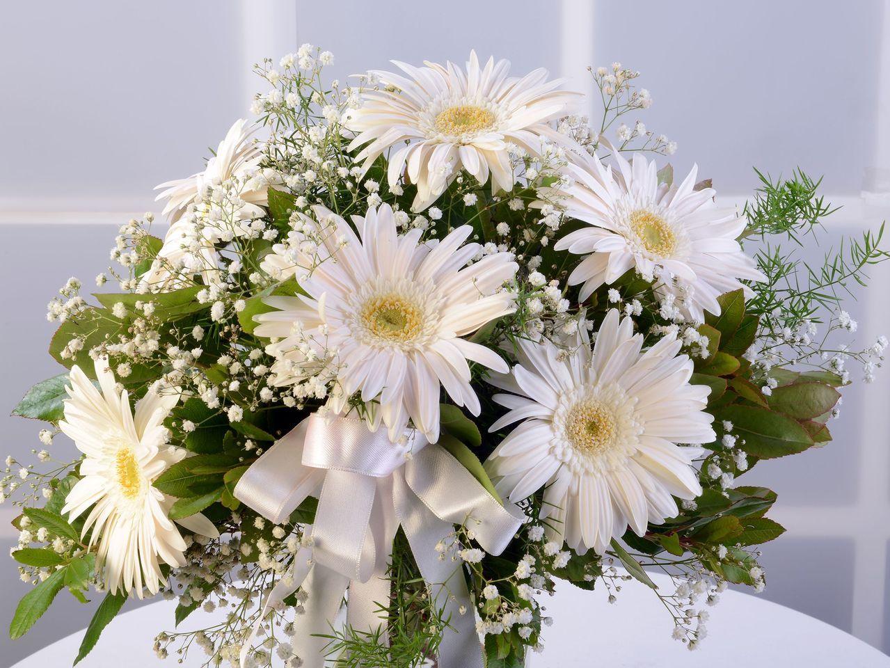 Beyaz Gerberalar Aranjmanlar çiçek gönder