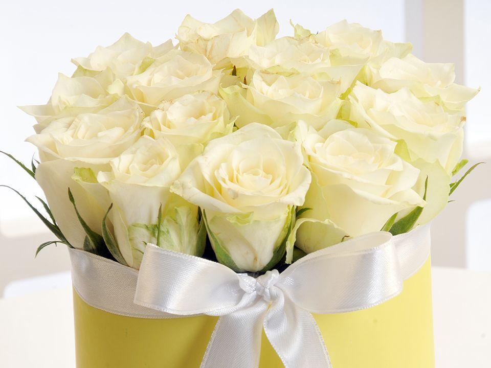Okyanusun Sesi Kutuda Çiçek çiçek gönder