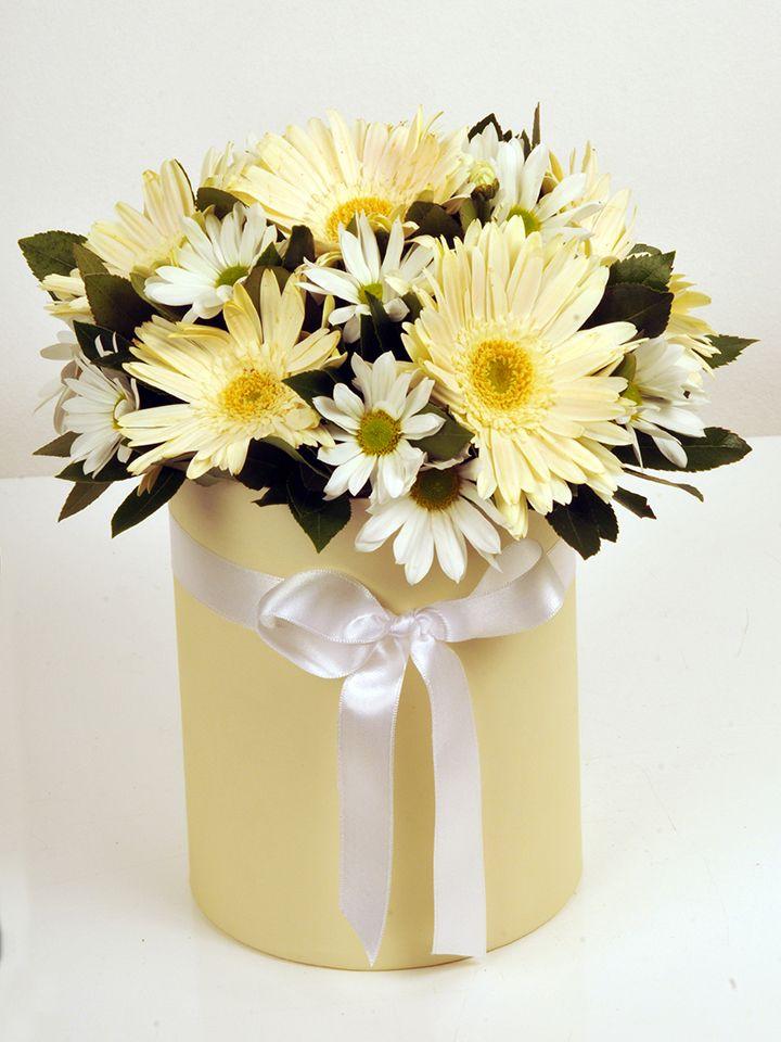 Gerberalar ve Krizantemler. Kutuda Aranjmanlar çiçek gönder